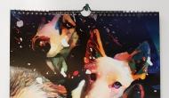 Portfolio - Kalendarze spiralowane #3